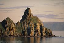 Alaska, Round Island, Bristol Bay, Bering Sea, Summer walrus haulout von Danita Delimont