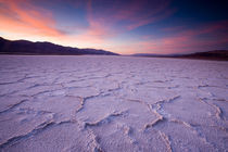 Pressure ridges in the salt pan near Badwater, Death Valley N.P., California. by Danita Delimont