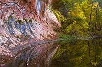 USA, Arizona, Sedona von Danita Delimont