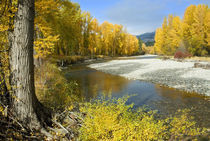 Methow River in Autumn, Winthrop, Washington, USA von Danita Delimont