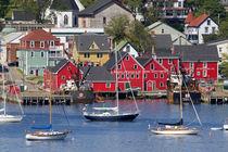 Lunenberg, Nova Scotia, Canada von Danita Delimont