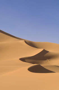 Erg Awbari, Sahara desert, Fezzan, Libya. by Danita Delimont
