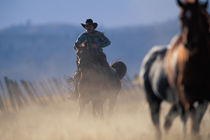 North America, USA, Oregon. Cowboy riding horse von Danita Delimont