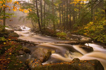 USA, Vermont, East Arlington, Flowing streams along the Appalachian Trail von Danita Delimont