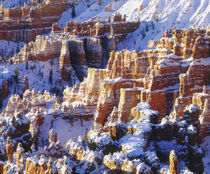 USA, Utah, Bryce Canyon National Park von Danita Delimont
