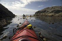 Paddling Through the Bull Kelp Forest, Broken Island Group von Danita Delimont