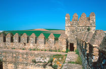 Castillo de Las Aguzaderas is a castle with a view of agriculture in south Spain von Danita Delimont
