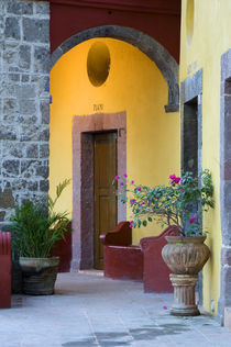 Mexico, San Miguel de Allende, Archway entrance to home. Credit as von Danita Delimont