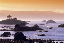 Sunrise at Crescent City, California. by Danita Delimont