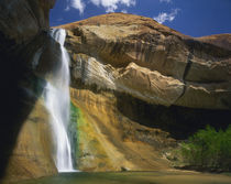 GRAND STAIRCASE-ESCALANTE NATIONAL MONUMENT, UTAH. USA. Lower Calf Creek Falls von Danita Delimont