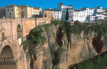The gorge in Ronda by Danita Delimont