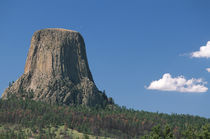Tourists riding horses in front of Devils Tower National Monument, Wyoming by Danita Delimont