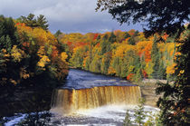 Upper Tahquamenon Falls in UP Michigan in autumn by Danita Delimont