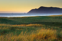 Grass waving in the wind at the coast near Gearhart, Oregon. by Danita Delimont