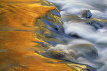 USA, Northeast, Fall color reflections on stream rapids. Credit as von Danita Delimont