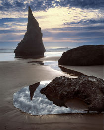 USA, Oregon, Face Rock Wayside von Danita Delimont