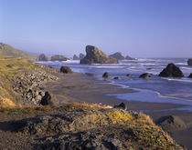 OR, Oregon Coast, Myers Creek, rock formations and shore by Danita Delimont
