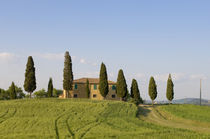 Pienza, Val d'Orcia, Siena province, Tuscany, Italy. by Danita Delimont
