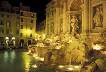 Italy, Rome. Trevi Fountain at night. von Danita Delimont