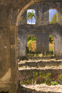 BARBADOS-St. Peter Parish-Farley Hill by Danita Delimont