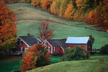 The Jenne Farm ion the fall, near Woodstock, Vermont. A release is available. by Danita Delimont