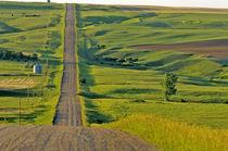 Comertown gravel road in remote northeastern Montana