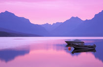 North America, USA, Montana, Glacier National Park. Lake McDonald at dawn von Danita Delimont