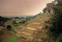 Palenque; Chiapas; Mexico; Maya von Danita Delimont