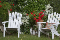 garden, backyard, americana by Danita Delimont