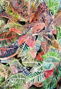croton plant painting art print by Derek McCrea