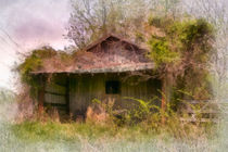 Derelict shed by Susan Isakson
