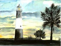 tybee island lighthouse by Derek McCrea