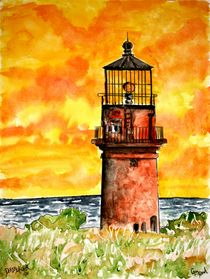 gayhead lighthouse von Derek McCrea