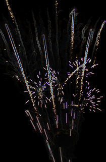 Glowing Firework Exploding by Tracy Arnold