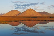 Peak Reflections, ANWR, Alaska von Stephen Weaver