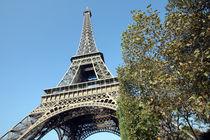 Eiffel Tower, Paris von John Selkirk