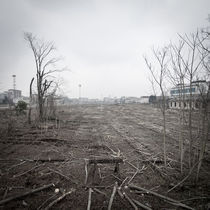 Desolate landscape by Eugenio Marongiu