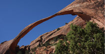 Landscape Arch - Moab by Alan Spink