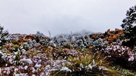 Snow-covered-redrocks
