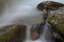 Great nature von Tiago Pinheiro