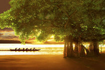 Banyan Beach von Douglas Page