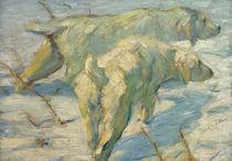 Franz Marc, Sibirische Schaeferhunde by AKG  Images