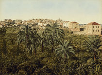 Jaffa, Stadtansicht / Photochrom by AKG  Images