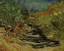 V.van Gogh, Weg in St.Remy von AKG  Images