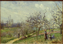 Pissarro/ Bluehender Obstgarten/ 1872 von AKG  Images