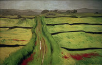 F.Vallotton, Weg in der Heide by AKG  Images