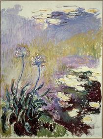 C.Monet, Schmucklilien von AKG  Images