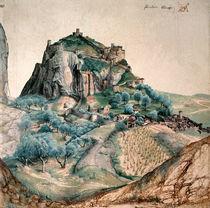 Albrecht Duerer, Arco / 1495 von AKG  Images