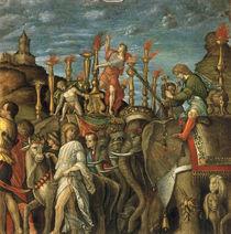 nach Mantegna, Triumph Caesars, Elefanten by AKG  Images