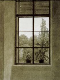 C.D.Friedrich, Fenster mit Parkpartie by AKG  Images